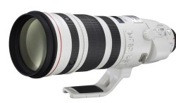 Canon 200-400mm f/4L EF IS USM