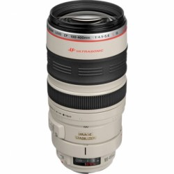 Объектив Canon EF 100-400mm f/4.5-5.6 L IS USM